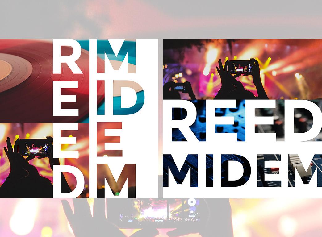 Création Reed Midem Spice Up 4