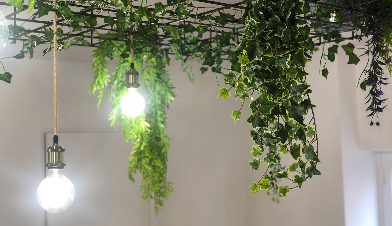 Agence décoration plafond 2